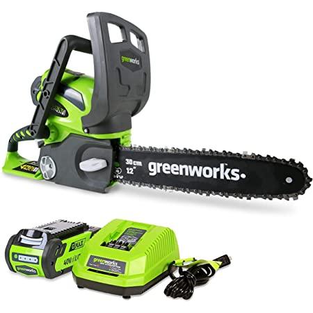 Greenworks 20262Cordless Chainsaw